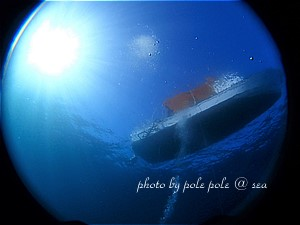 f:id:polepole-at-sea:20191123222341j:plain