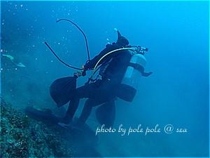 f:id:polepole-at-sea:20191128090110j:plain