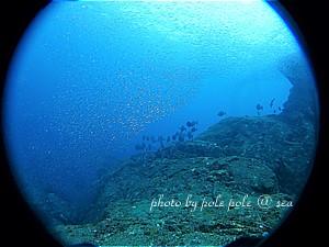 f:id:polepole-at-sea:20191208000433j:plain