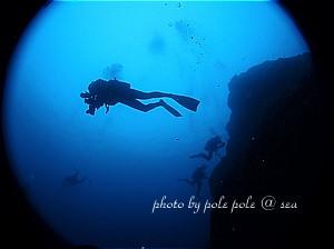 f:id:polepole-at-sea:20191208000549j:plain