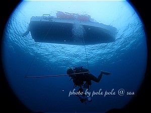 f:id:polepole-at-sea:20191208000640j:plain