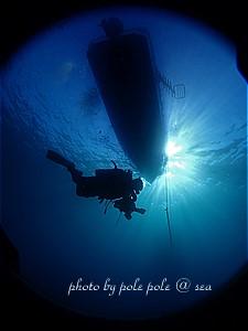 f:id:polepole-at-sea:20191209012138j:plain