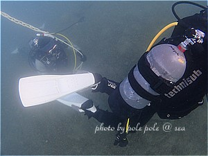 f:id:polepole-at-sea:20200104223539j:plain