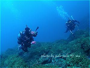 f:id:polepole-at-sea:20200121111930j:plain