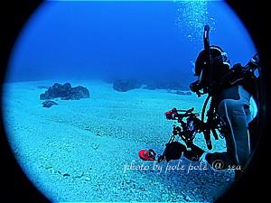 f:id:polepole-at-sea:20200209122404j:plain