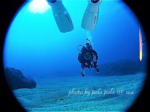 f:id:polepole-at-sea:20200209122508j:plain