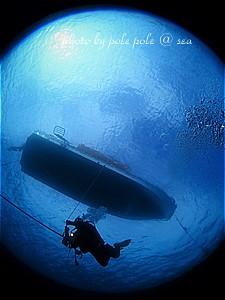 f:id:polepole-at-sea:20200216124459j:plain