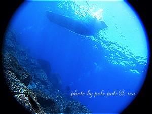 f:id:polepole-at-sea:20200303132155j:plain