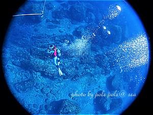 f:id:polepole-at-sea:20200303132448j:plain