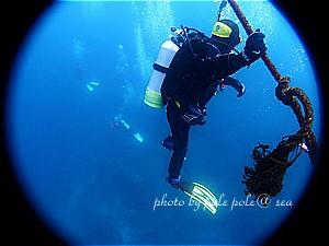f:id:polepole-at-sea:20200321231513j:plain