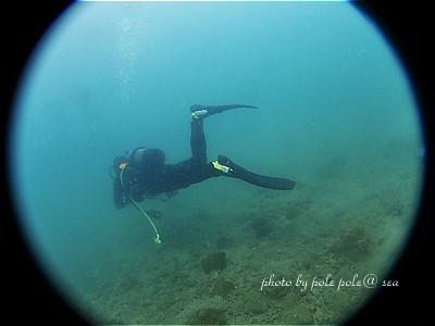 f:id:polepole-at-sea:20200725231915j:plain