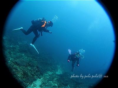 f:id:polepole-at-sea:20200730065729j:plain