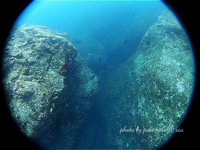 f:id:polepole-at-sea:20200730233439j:plain