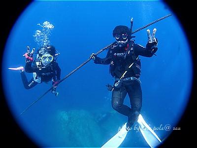 f:id:polepole-at-sea:20200813232621j:plain