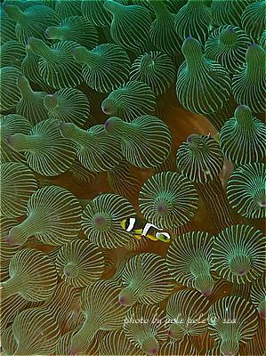 f:id:polepole-at-sea:20200826000346j:plain