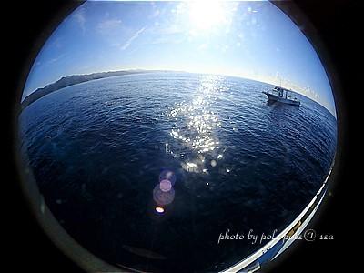 f:id:polepole-at-sea:20200831000136j:plain