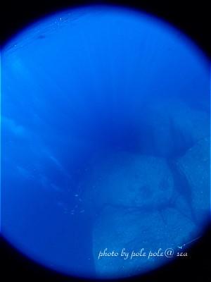 f:id:polepole-at-sea:20200831000256j:plain