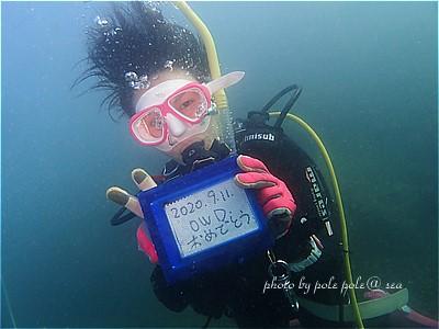 f:id:polepole-at-sea:20200912000532j:plain