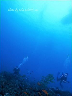 f:id:polepole-at-sea:20200914010044j:plain