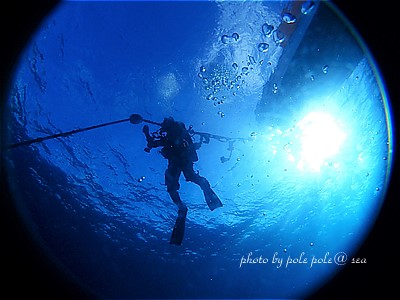 f:id:polepole-at-sea:20201120003820j:plain