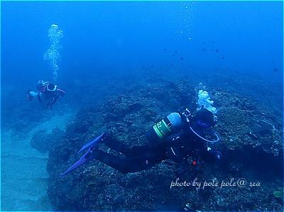 f:id:polepole-at-sea:20201120004614j:plain