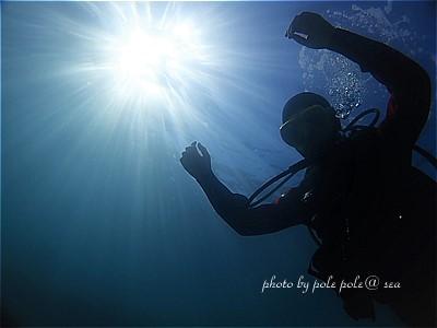 f:id:polepole-at-sea:20210220180627j:plain