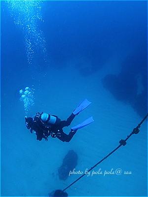 f:id:polepole-at-sea:20210308183151j:plain