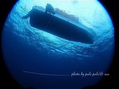 f:id:polepole-at-sea:20210308183208j:plain