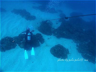 f:id:polepole-at-sea:20210314235009j:plain