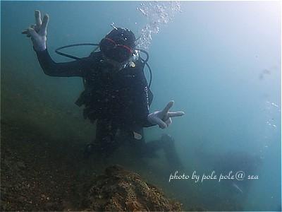 f:id:polepole-at-sea:20210423230242j:plain