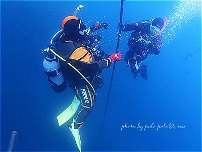 f:id:polepole-at-sea:20210425210552j:plain