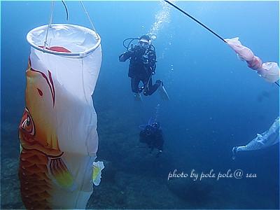 f:id:polepole-at-sea:20210430225331j:plain
