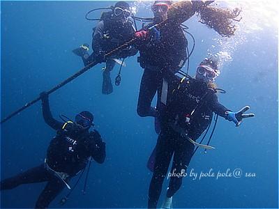f:id:polepole-at-sea:20210516195228j:plain