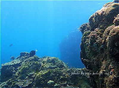 f:id:polepole-at-sea:20210715221227j:plain