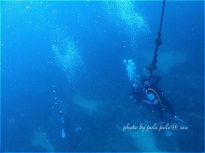 f:id:polepole-at-sea:20210913010833j:plain