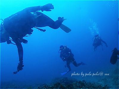 f:id:polepole-at-sea:20211010231530j:plain