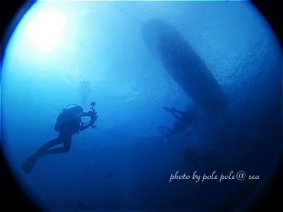 f:id:polepole-at-sea:20211015231614j:plain