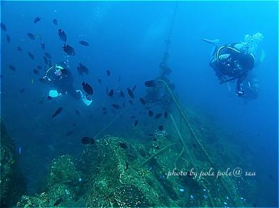 f:id:polepole-at-sea:20211016203901j:plain