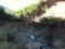 檜股、河道閉塞