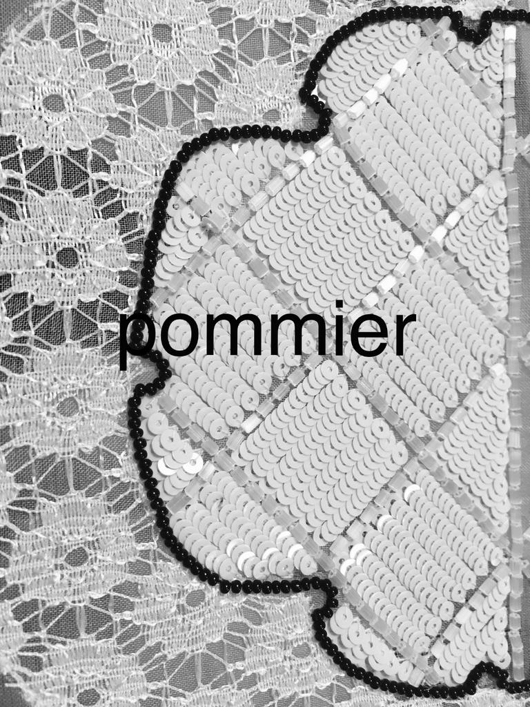 f:id:pommier0430:20190110233918j:plain