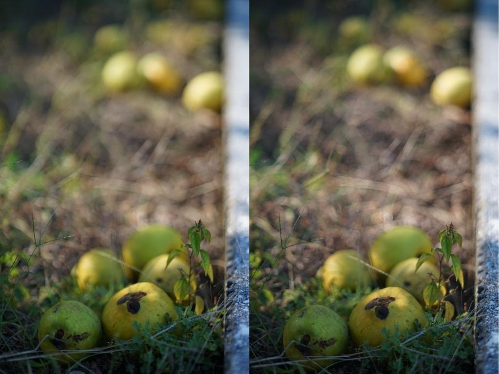 f:id:pompei:20171010175224j:plain