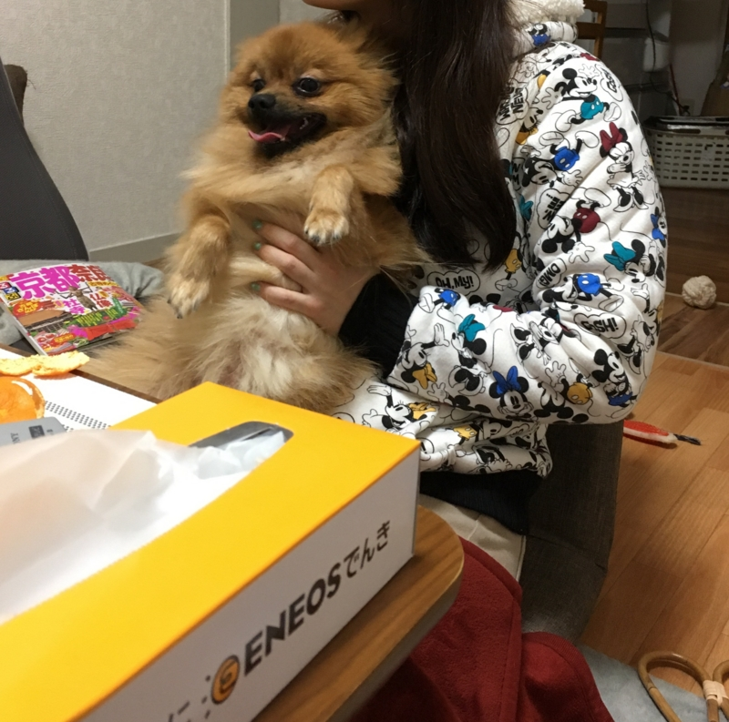 f:id:pon_ishikawa:20161231143942j:plain