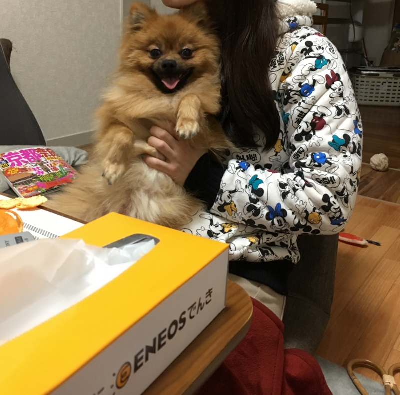 f:id:pon_ishikawa:20161231143953j:plain