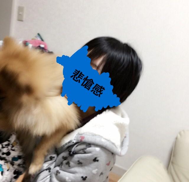 f:id:pon_ishikawa:20161231144012j:plain