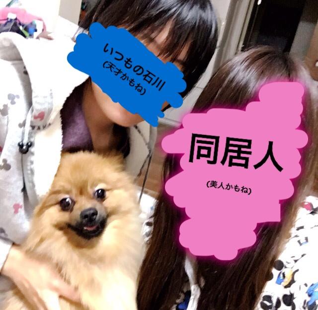 f:id:pon_ishikawa:20161231170821j:plain
