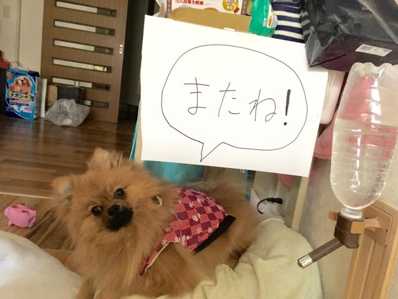 f:id:pon_ishikawa:20170118153202j:plain