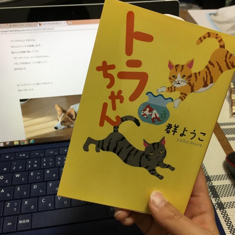 f:id:pon_ishikawa:20170221230010j:plain