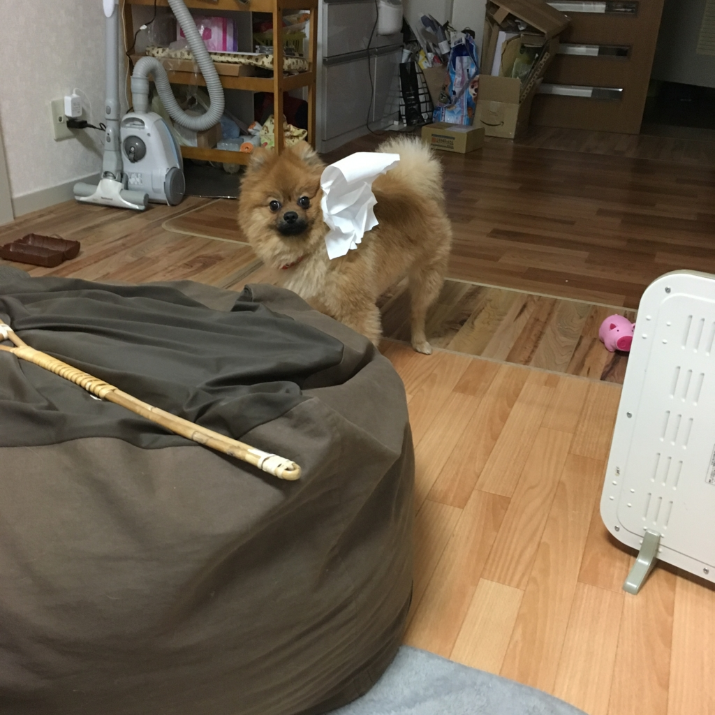 f:id:pon_ishikawa:20170430163743j:plain