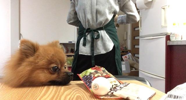 f:id:pon_ishikawa:20170928184406j:plain