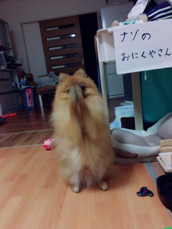 f:id:pon_ishikawa:20171028184942j:plain